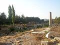 Ruins in Ephesus (2).jpg