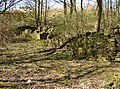 Ruins of Delph Hill, off Cromwell Wood lane, Southowram (1) - geograph.org.uk - 400083.jpg