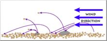 Schema del processo di saltazione dei granuli di sabbia sotto l'effetto di una corrente eolica. Le traiettorie dei granuli sono rappresentate realisticamente, con un angolo di impatto di circa 15°.