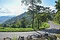 Samdeng Forest in Chiang Mai Province 10.jpg
