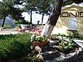 Samos - panoramio (2).jpg