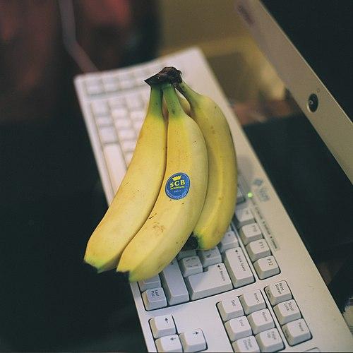 Scb bananas