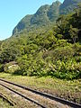 Scenery along Train Route from Curitiba to Morretes - Brazil.jpg