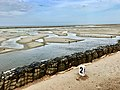 Sea wetlands along Rameswaram-Dhanushkodi road 1.jpg