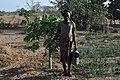 Senegalese women gardeners 5.jpg