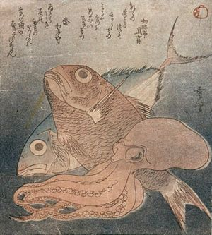 Surimono - Squid, Bream and Bonito. Surimono by Setsuri (nothing is known about Setsuri (雪里) other than that he designed this surimono for the Drum Group (whose seal is in the right upper corner) about 1820.