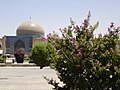 Sheikh Lotfollah Mosque in the background.jpg