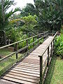 Singapore Botanic Gardens, Eco-lake 5, Sep 06.JPG