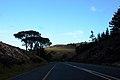 Sir Lowry's Pass - panoramio (7).jpg