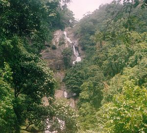 Siruvani Waterfalls - Image: Siruvani Falls view from path 2 falls