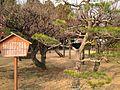 Site of statue of Nagaoka Morimasa in Suizenji Joju Garden.JPG
