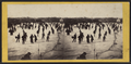 Skating scene in Central Park, winter 1866, by E. & H.T. Anthony (Firm) 3.png