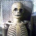 Skeleton Breedon Portrait.jpg