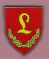 StKp PzLehrBrig 9 (V1).png