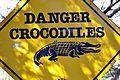 St Lucia Crocodiles (14940937009).jpg