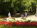Stadtpark Steglitz - geo.hlipp.de - 28662.jpg