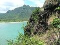 Starr-050419-0438-Melinis repens-habit-Mokolii-Oahu (24745449565).jpg