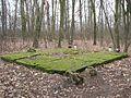 Stary cmentarz Wiązownica Mała 2013 11.JPG