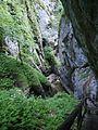 Steiermark Bärenschützklamm 38.JPG