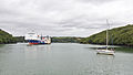 Stena Scotia and other ships moored in Carrick Roads-8755.jpg