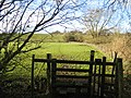Stile and footpath near Cuddington - geograph.org.uk - 413244.jpg
