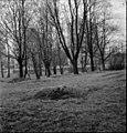 Stockholm, Johanneshovs kolerakyrkogård - KMB - 16000200108841.jpg