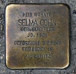 Photo of Selma Cohn brass plaque