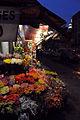 Street Flowers (3395880246).jpg