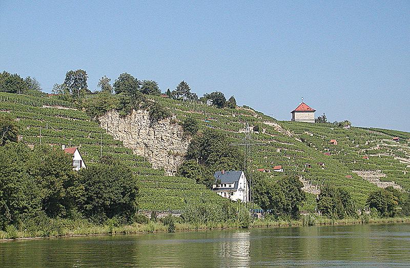 Steinhaldenfeld