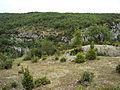 Sur le site de l'oppidum de Murcens - Vers l'est - Lot - France.jpg