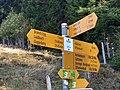 Swiss Hiking Network - Guidepost - Martene.jpg