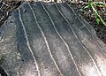 Symmetrical ripple marks (Berea Sandstone, Upper Devonian-Lower Mississippian; Blendon Woods Park, Columbus, Ohio, USA) 1 (35803048116).jpg