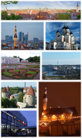 TE-Collage Tallinn.png