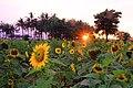 Taman Matahari Tangerang.jpg