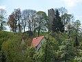 Tautenburg 2006-05-07 04.jpg