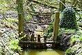 Tervüren - Natur im Frühling - Wasserlauf im Wald P1010222 -2-.jpg