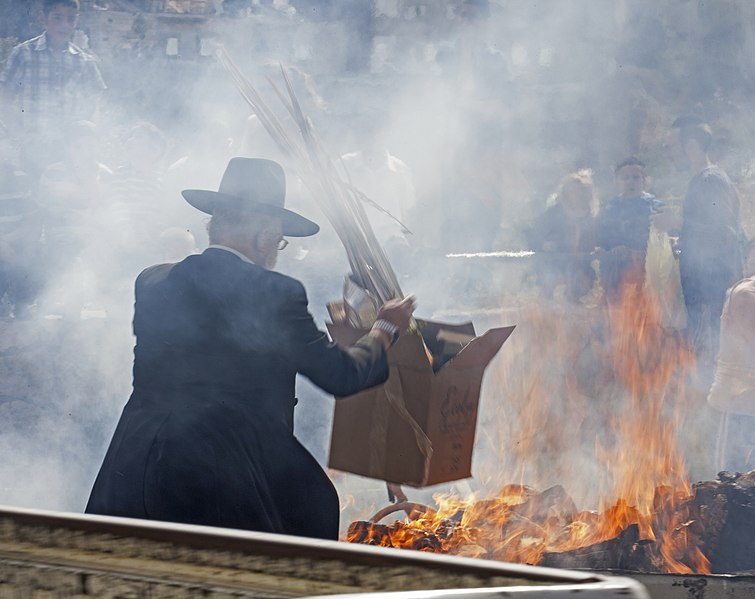 Fitxer:The Burning of the Chametz (5) (13843711513).jpg