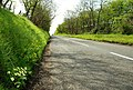 The Burnquarter Road near Ballymoney - geograph.org.uk - 786033.jpg