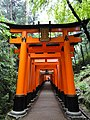 "The Famous ""Thousand Torii Gates"" behind Fushimi Inari Shrine in Kyoto (35450836263).jpg"