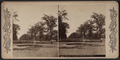 The Mall, Central Park, N.Y, from Robert N. Dennis collection of stereoscopic views.png