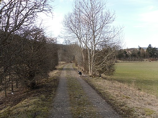The disused Peebles to Galashiels Railway - geograph.org.uk - 1772873