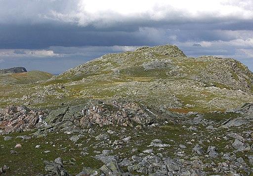 The summit of Aran Fawddwy - geograph.org.uk - 547338