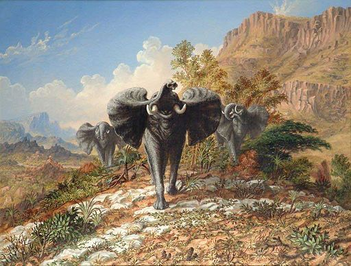 Thomas Baines - Elephants charging over quartose country