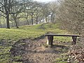 Thornton Wood - geograph.org.uk - 787737.jpg