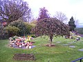 Tiverton , Tiverton Cemetery, Garden of Remembrance - geograph.org.uk - 1280914.jpg