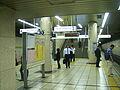 TokyoMetro-Y09-Ikebukuro-station-platform.jpg