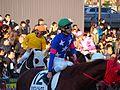 Tokyo Daishoten Day at Oi racecourse (31834486402).jpg