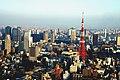Tokyo Tower and surrounding area.jpg
