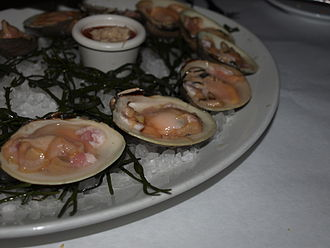 Hard clam - Raw top neck clams in New Jersey.