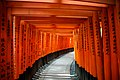 Torii gates—Fushimi Inari Shrine (9977683204).jpg